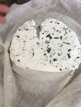 Cheese pressed into round shape