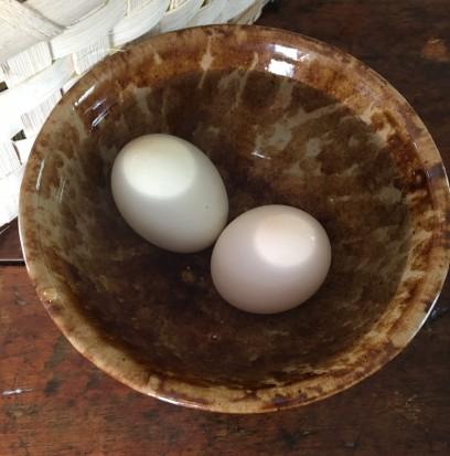 Cool Eggs